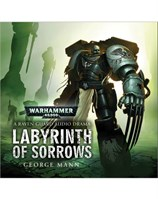 Labyrinth of Sorrows (MP3)