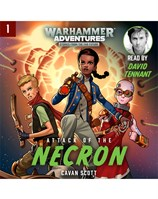Warhammer Adventures: Attack of the Necron
