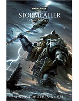Stormcaller (eBook)