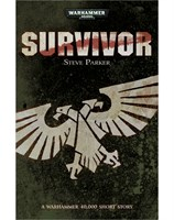 Survivor (eBook)
